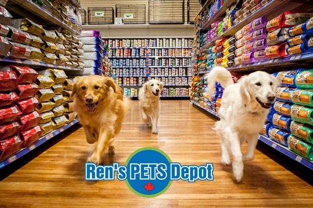 Rens Pet S Depot Porchlight Equity